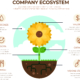 Company Ecosystem